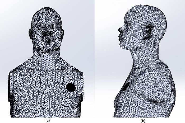 Meshed model: a) Front view, b) Right view