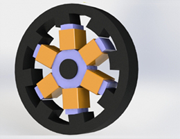 Switched Reluctance Motor for Electric Vehicles